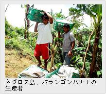 ネグロス島、バランゴンバナナの生産者